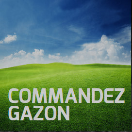 service gazon mobile